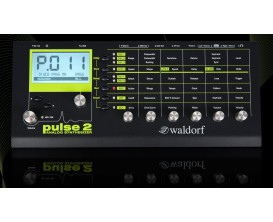 WALDORF Pulse 2 - Synthétiseur Analogique