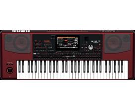 KORG PA-1000 - Clavier Arrangeur Professionnel