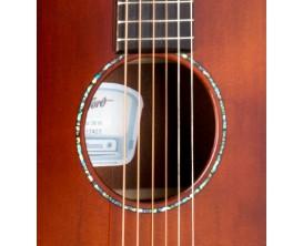 STANFORD D66 ECW Antique top - Guitare électro-acoustique dreadnought série Roots, pan coupé, Finition Antique
