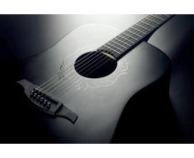 LAG LE18-SK3D - Guitare Dreadnought, série limitée Skullture, Noir satiné
