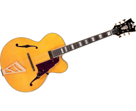 D'ANGELICO EXL1-NAT - Hollowbody archtop - Naturel (Avec étui deluxe)*