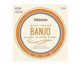 D'ADDARIO EJ63I - Jeu de cordes pour Banjo Irlandais, Light
