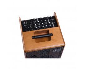 ACUS ONE 6TC - Ampli électro-acoustique 130w,Pan coupé, Finition bois