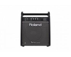 """ROLAND PM-100 - Drum Monitor 80w hp 10"""" + tweeter"""