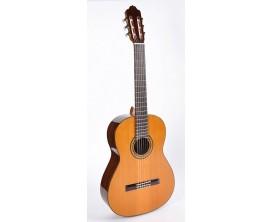 ESTEVE - 6PS-CD -Guitare classique cèdre massif , palissandre indien. b&s