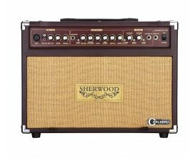 SHERWOOD 30 - Ampli combo guitare acoustique SHERWOOD30